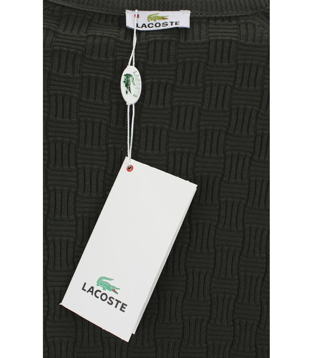 Темно-зеленый джемпер Lacoste с узором  JLN