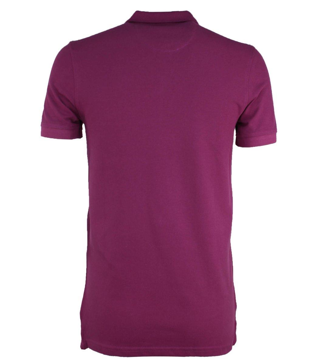 Сливовая футболка поло Ralph Lauren R1